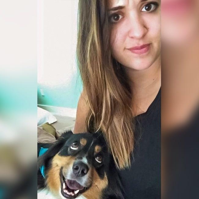 Собаки6