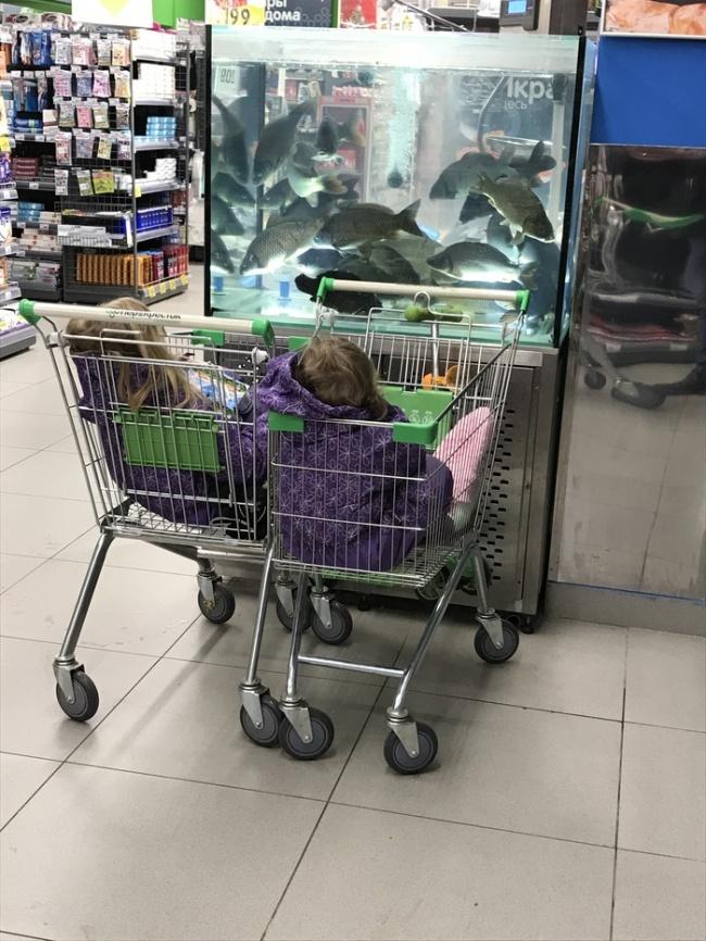 Дети не скучно19