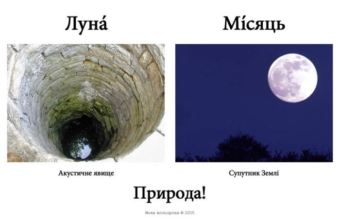 Русизми1