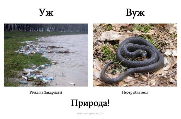 Русизми2