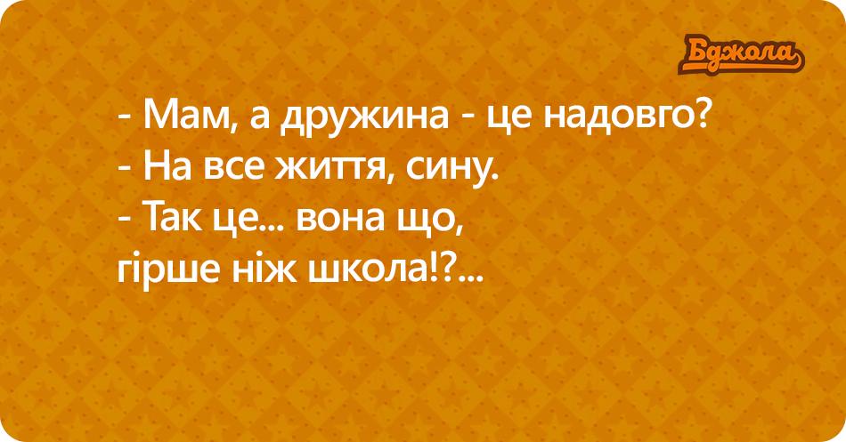 бджола БЕЗ ФОТО(1)