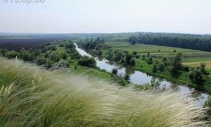Прогноз клева кривой рог на реке ингулец